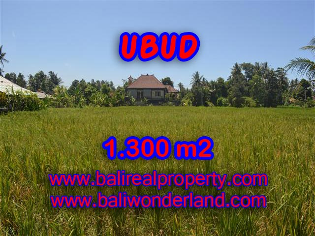 Land for sale in Bali, spectacular view in Ubud Bali – TJUB386
