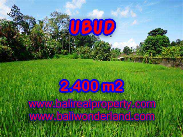 Land for sale in Bali, magnificent view Ubud Bali – TJUB390