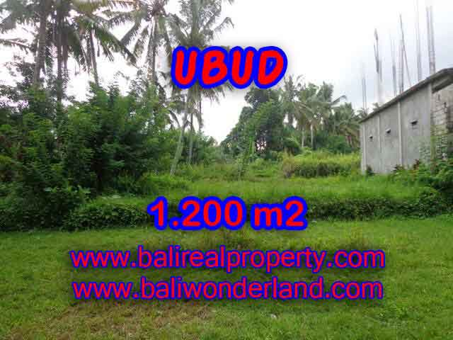 Beautiful Property for sale in Bali, LAND FOR SALE IN UBUD Bali – TJUB399