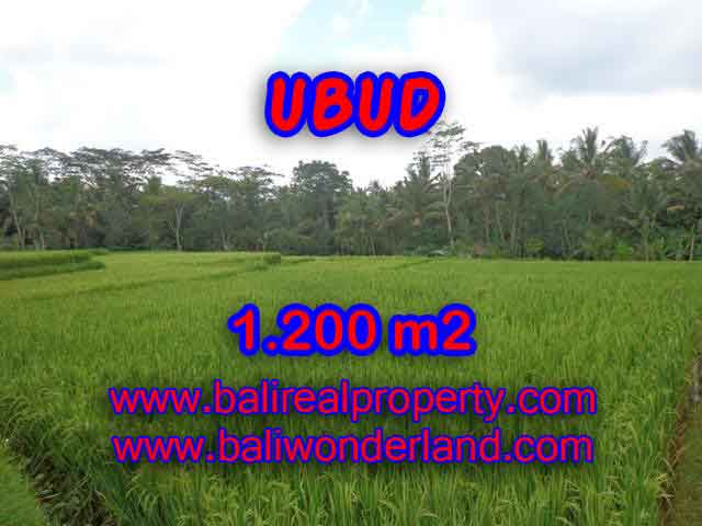 Beautiful Property for sale in Bali, land for sale in Ubud  – TJUB400