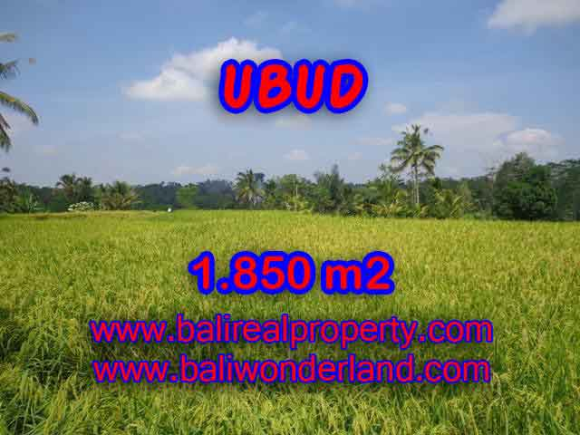 Excellent Property for sale in Bali, land for sale in Ubud Bali  – TJUB410