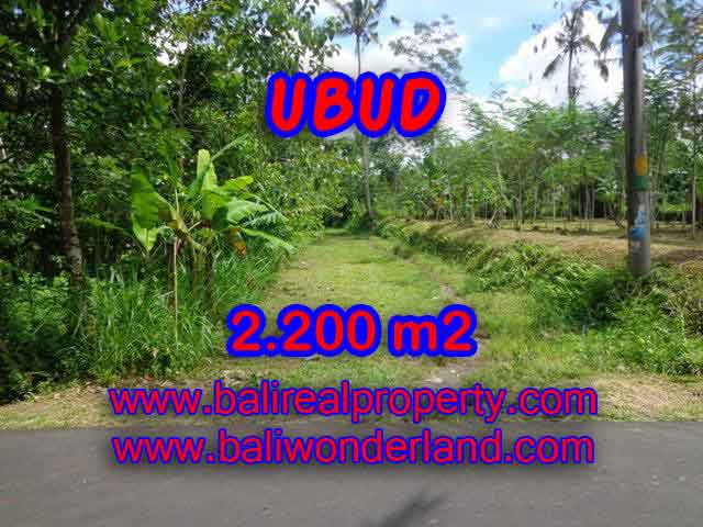 Spectacular Property in Bali, land for sale in Ubud Tegalalang – TJUB408