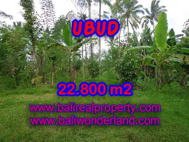 Exotic Property for sale in Bali, LAND FOR SALE IN UBUD Bali – TJUB409