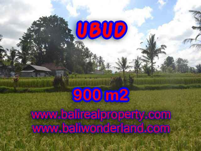 Magnificent Property in Bali for sale, land in Ubud Bali for sale – TJUB412