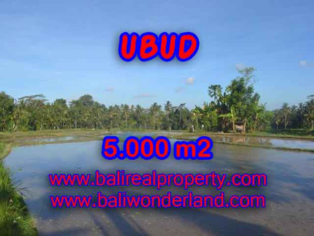 Exceptional Property in Bali, land for sale in Ubud Bali – TJUB413