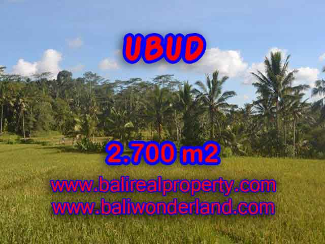 Magnificent Property for sale in Bali, land for sale in Ubud Bali – TJUB414