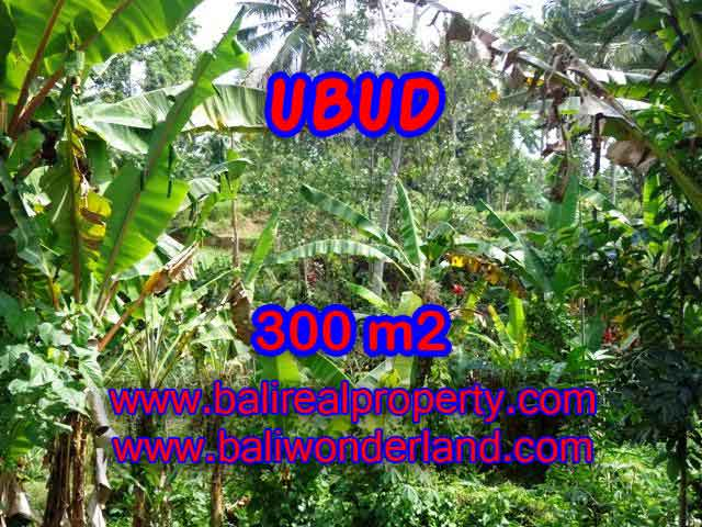 Land for sale in Ubud Bali, Unbelievable view in Ubud Center – TJUB415