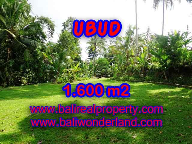 Land for sale in Ubud Bali, Astounding view in Ubud Center – TJUB416