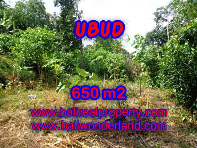 Land in Ubud Bali for sale, Exotic view in Ubud Center – TJUB417