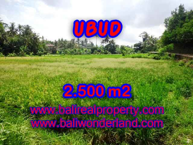 Land in Ubud for sale, Attractive view in Ubud Center Bali – TJUB418