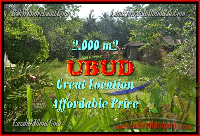 Interesting Land for sale in Ubud Bali, Jungle and river view in Ubud Center– TJUB429