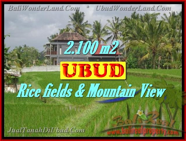 Land in Ubud for sale, Amazing view in Ubud Tegalalang Bali – TJUB423