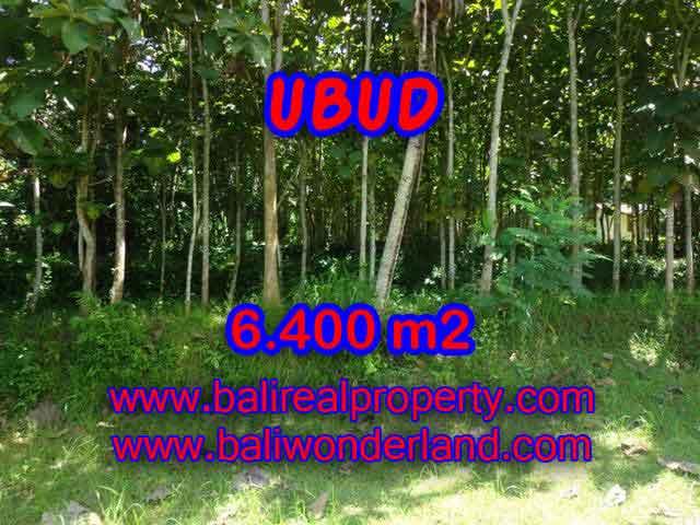 Stunning Property for sale in Bali land sale in Ubud Bali – TJUB401