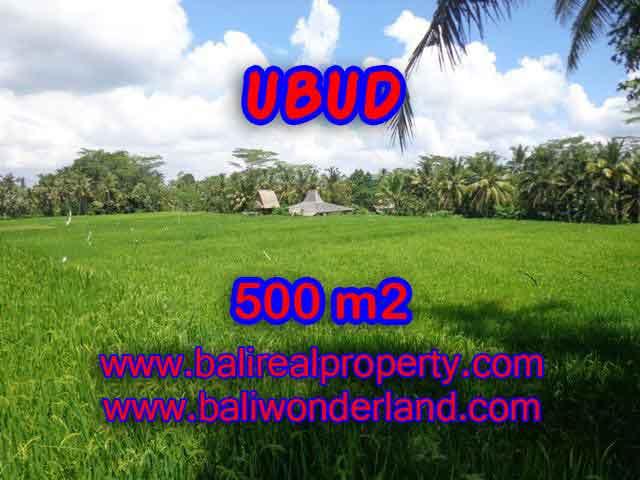 Property in Bali for sale, Astonishing land for sale in Ubud Bali – TJUB402