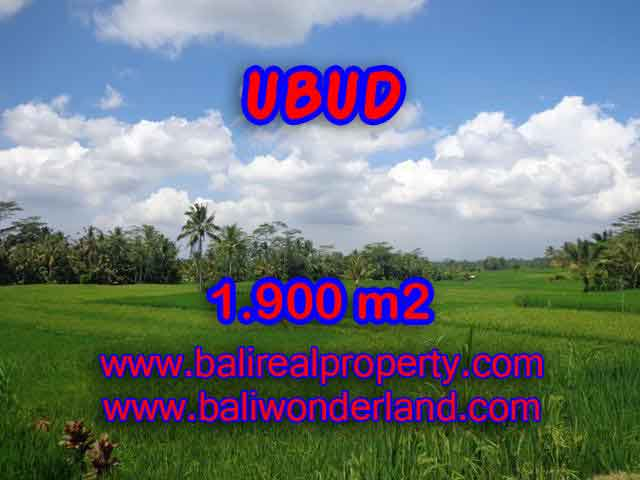 Astounding Property in Bali for sale, ricefields and mountain view land in Ubud Bali – TJUB403