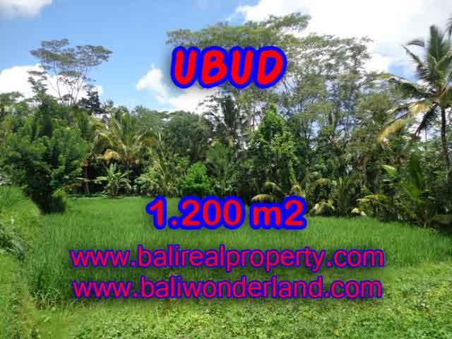 Property sale in Bali, Beautiful land in Ubud for sale – TJUB404