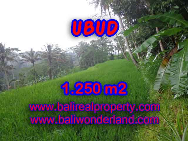 Attractive Property for sale in Bali, land for sale in Ubud  – TJUB405