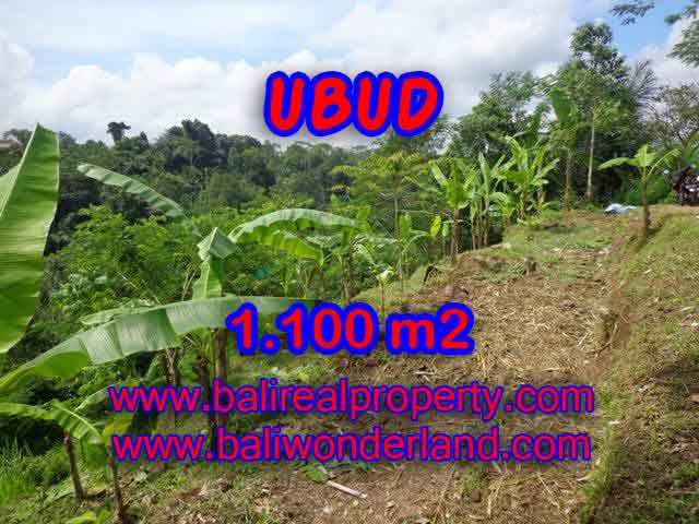 Property in Bali for sale, Fantastic view in Ubud Tegalalang – TJUB407