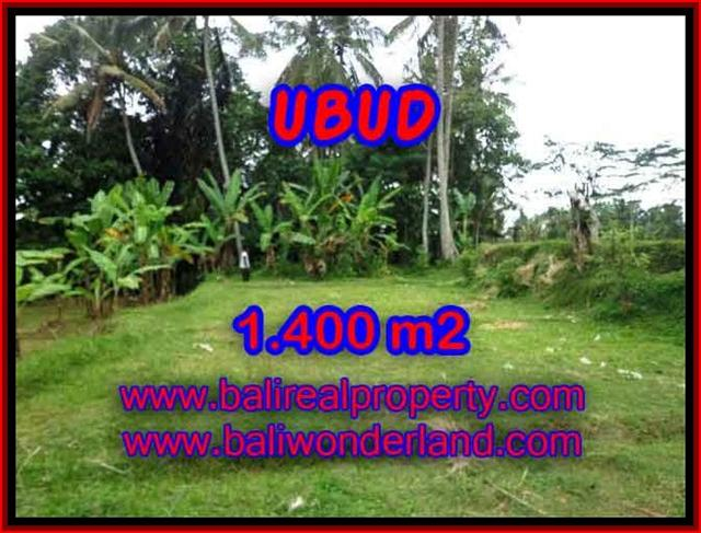 Fantastic Land for sale in Ubud Bali, Mountain and Ricefields view in Ubud Tegalalang– TJUB419