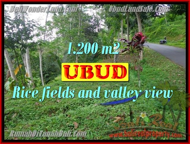 Land in Ubud Bali for sale, nice view in Ubud Tegalalang Bali – TJUB422