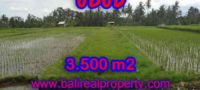 Astonishing Property for sale in Bali, LAND FOR SALE IN UBUD Bali – TJUB395