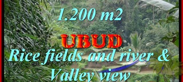 Land for sale in Ubud Bali, Magnificent view in Ubud Tegalalang – TJUB420