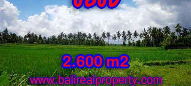 Extraordinary Land for sale in Ubud Bali, exotic mountain and rice fields view in Ubud Center– TJUB374