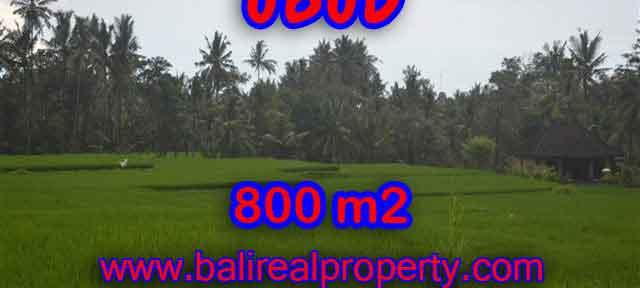 Outstanding Property for sale in Bali, land for sale in Ubud Bali – TJUB396