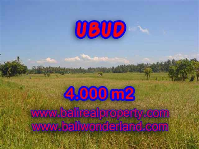 Land in Bali for sale, Stunning view in Ubud Bali – TJUB387