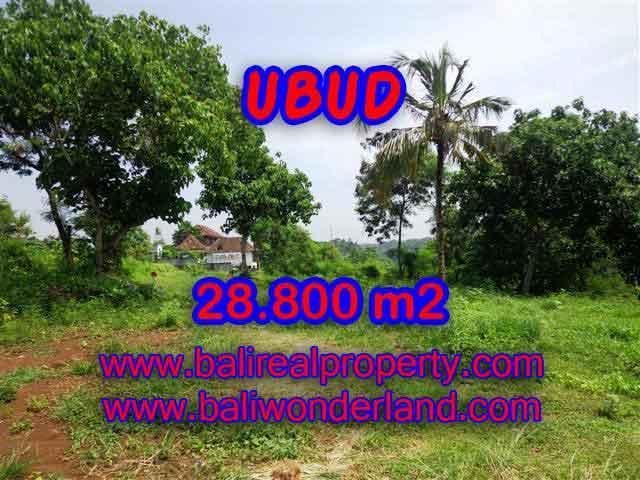 Land for sale in Ubud, Stunning view in Gianyar Bali – TJUB366