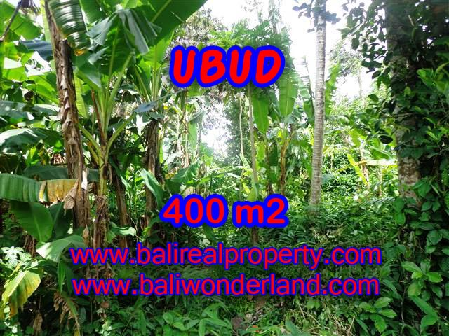Land for sale in Ubud, Magnificent view in Ubud Center Bali – TJUB371