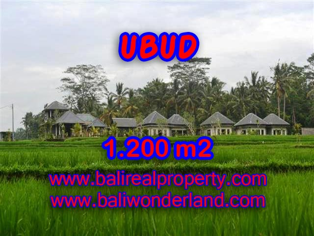 Land for sale in Ubud Bali, Great view in Central Ubud – TJUB365