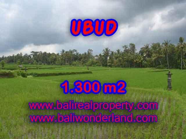 Beautiful Land for sale in Bali, Rice fields view in Ubud Bali – TJUB394