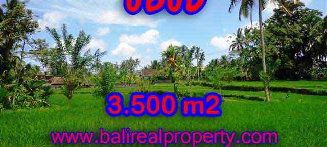 Land in Bali for sale, Outstanding view in Ubud Tegalalang Bali – TJUB388