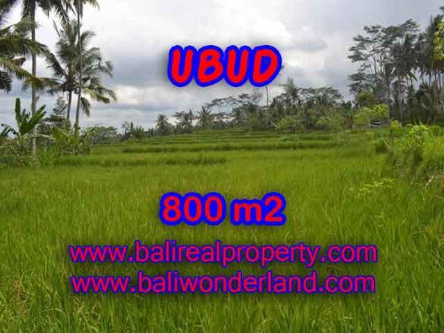 Amazing Land in Bali for sale in Ubud Pejeng Bali – TJUB393