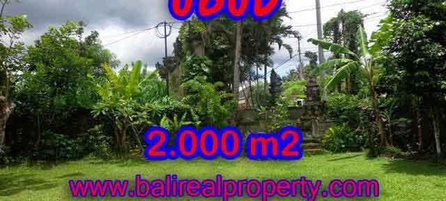 Land in Ubud Bali for sale, Outstanding view in Ubud Center – TJUB367