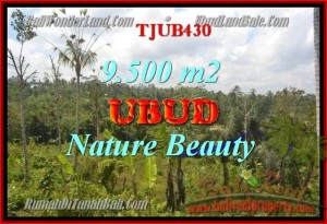 FOR SALE Affordable PROPERTY 9,500 m2 LAND IN UBUD TJUB430