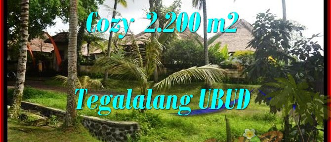 Magnificent PROPERTY LAND SALE IN Ubud Tegalalang BALI TJUB462