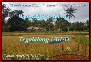 Exotic PROPERTY Ubud Tegalalang BALI LAND FOR SALE TJUB463