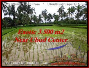 Magnificent PROPERTY 3,500 m2 LAND IN UBUD BALI FOR SALE TJUB477