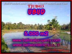 FOR SALE Affordable LAND IN Ubud Payangan TJUB413