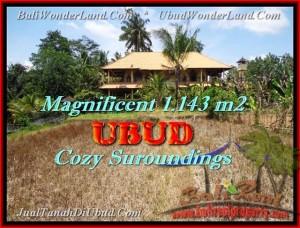 Magnificent UBUD BALI LAND FOR SALE TJUB460