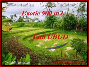 Beautiful PROPERTY UBUD LAND FOR SALE TJUB464