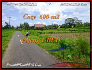 Exotic PROPERTY LAND FOR SALE IN UBUD TJUB465