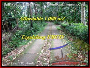 FOR SALE Beautiful LAND IN Ubud Tegalalang BALI TJUB467