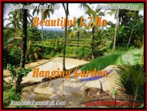LAND FOR SALE IN Ubud Payangan BALI TJUB470