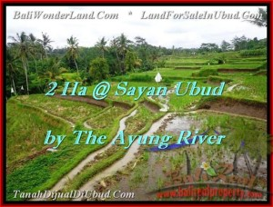 FOR SALE Exotic 20,000 m2 LAND IN UBUD TJUB473