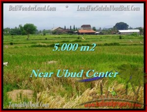 FOR SALE Exotic 5,000 m2 LAND IN UBUD TJUB474