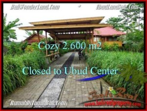 FOR SALE Magnificent 2,600 m2 LAND IN UBUD TJUB491