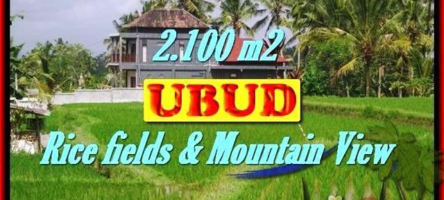 FOR SALE Beautiful 2,100 m2 LAND IN UBUD TJUB423